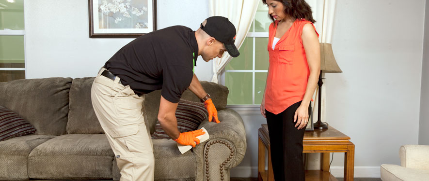 Suffolk, VA carpet upholstery cleaning