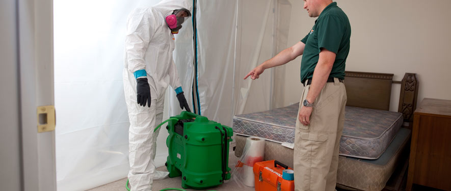 Suffolk, VA mold removal process